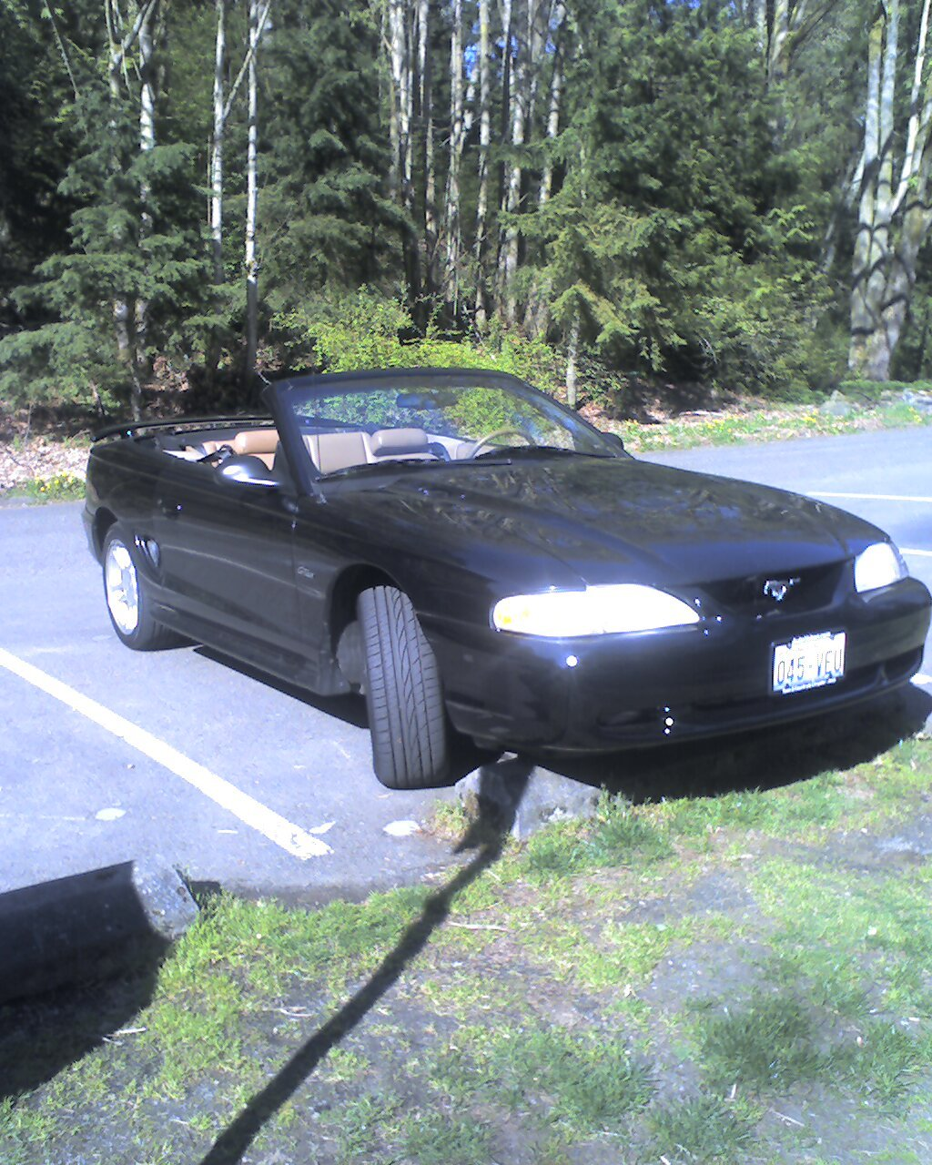 Another DanLXI88 1998 Ford Mustang post... - 13004812