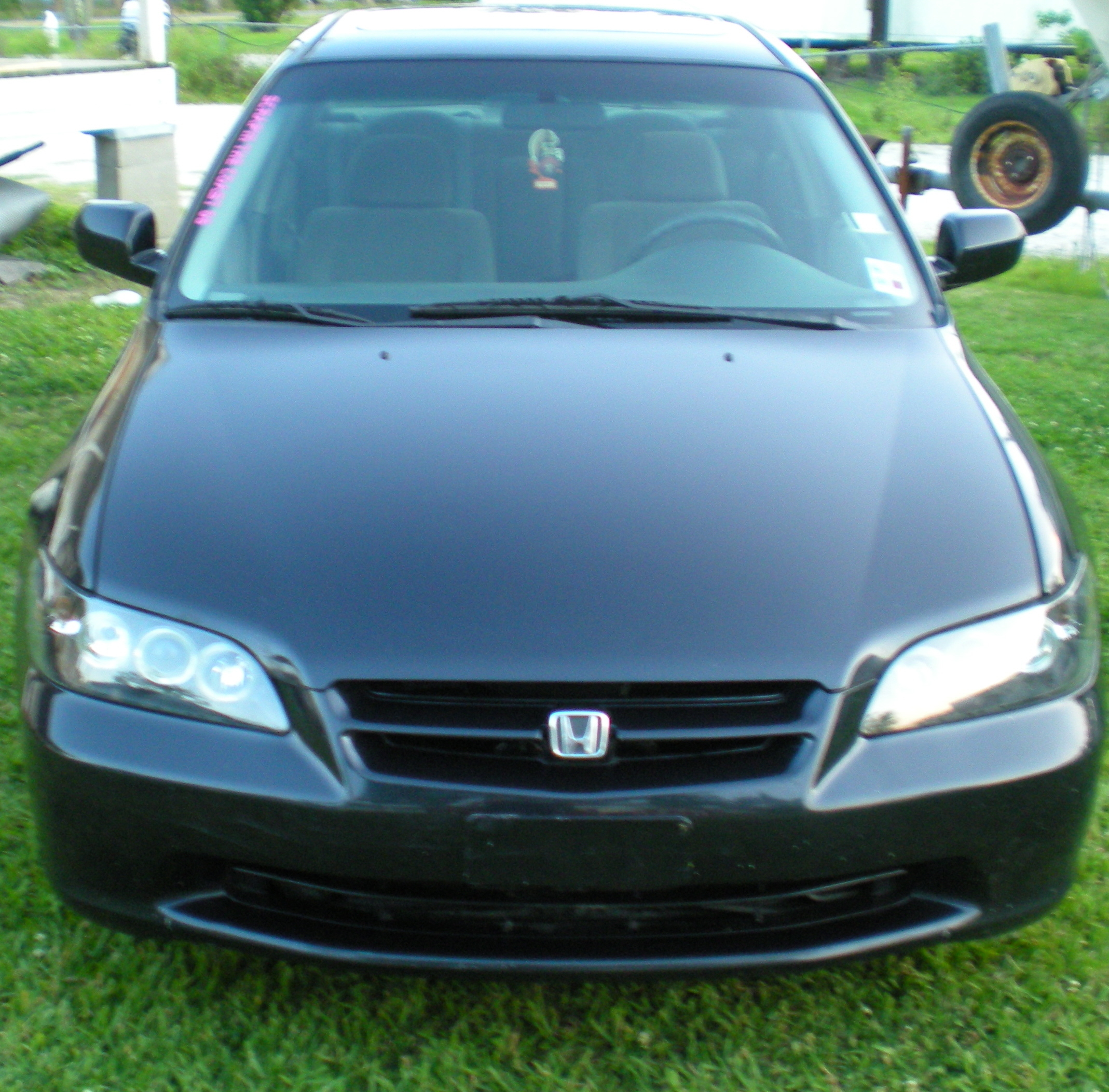 Honda-gurl 2000 Honda Accord