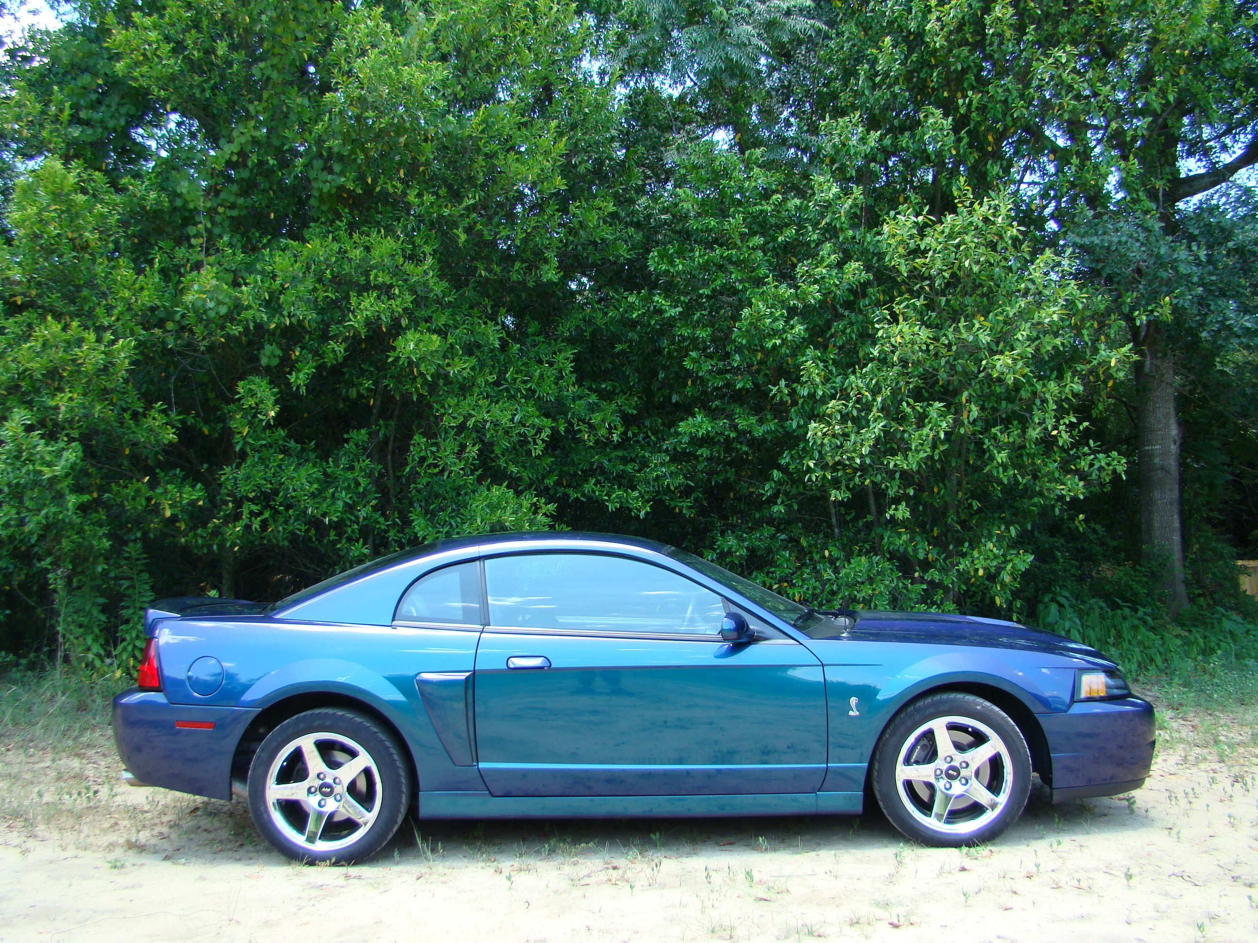 Another sevenleaf500 2004 Ford Mustang post... - 13043103