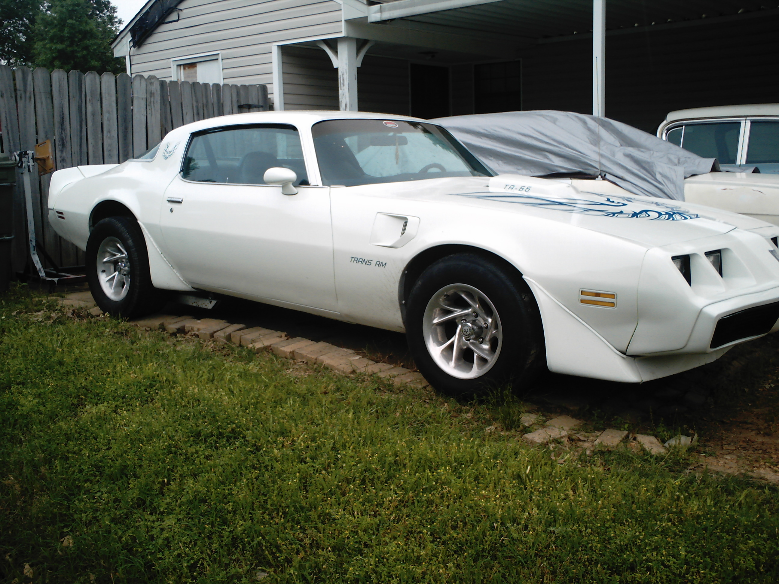 Heather Ann 1980 Pontiac Trans Am Specs Photos