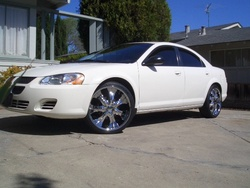 sharkcitys 2006 Dodge Stratus