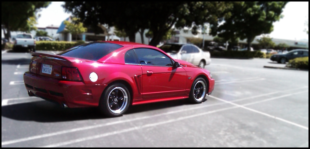 Abizzle 1999 Ford Mustang Specs Photos Modification Info