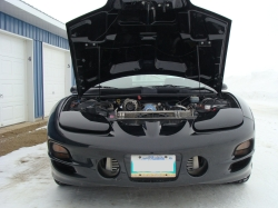 98P71_CVPIs 1998 Pontiac Trans Am