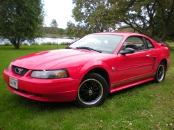 chevyfreak177s 2003 Ford Mustang