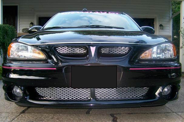 Another Terra Lynne 2003 Pontiac Grand Am post... - 13108689