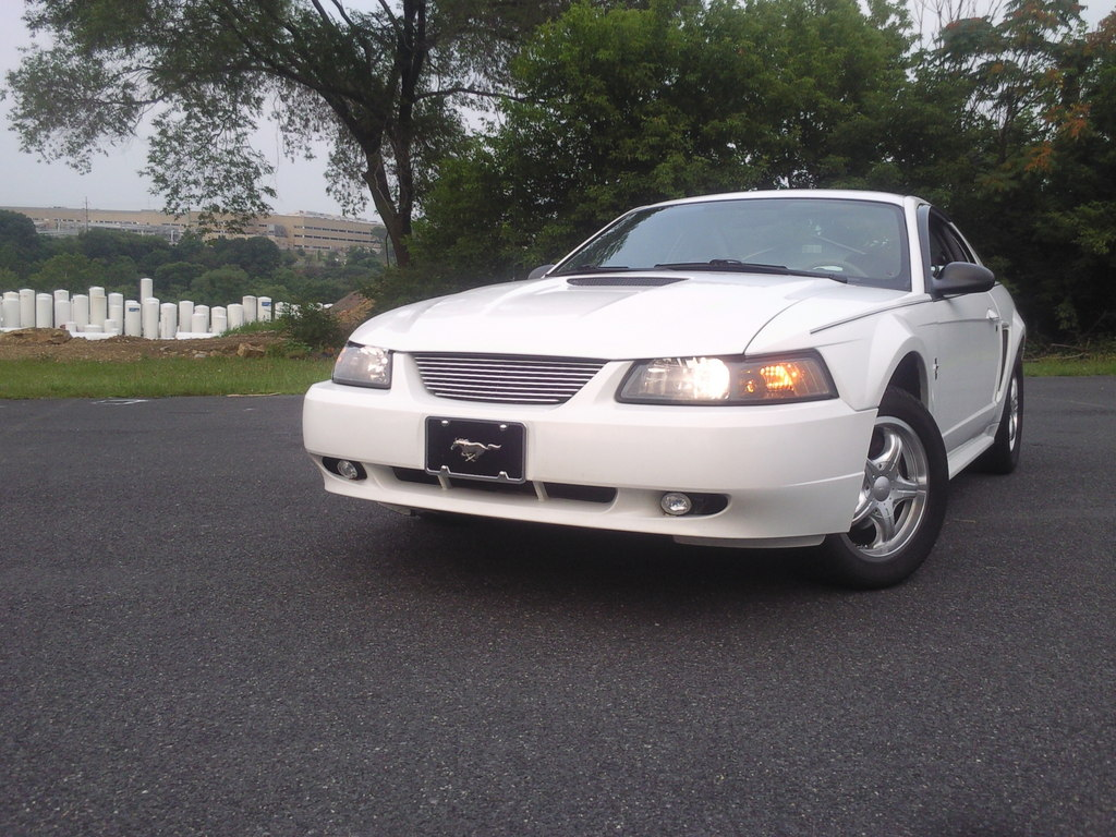 Another ashley1105 2000 Ford Mustang post... - 13358555