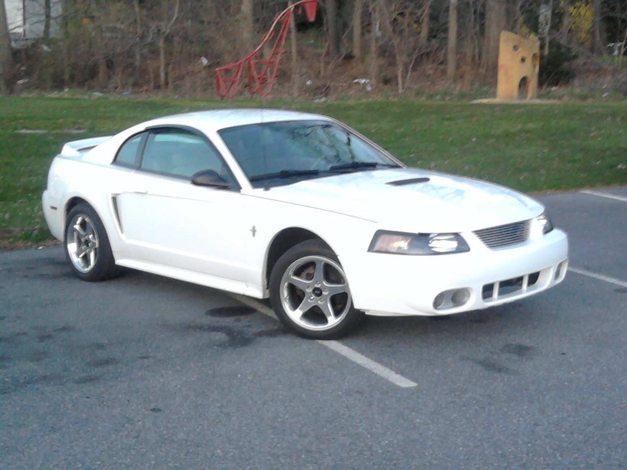 Another ashley1105 2000 Ford Mustang post... - 13358573