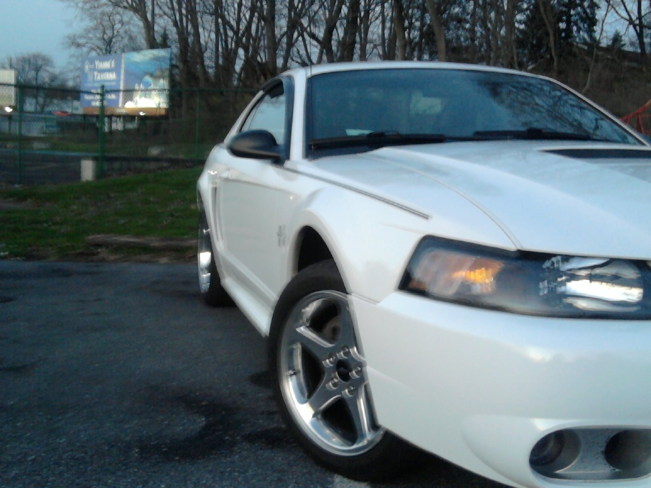 Another ashley1105 2000 Ford Mustang post... - 13358577