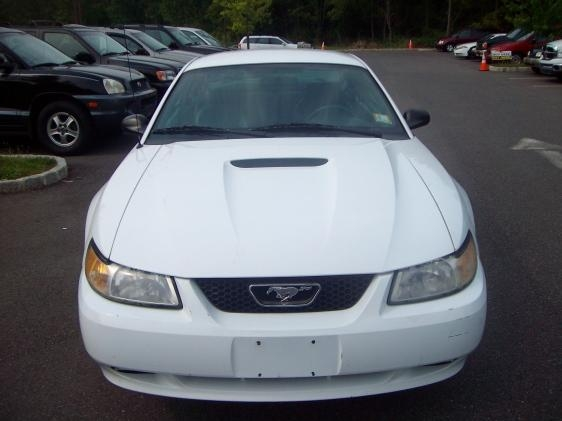 Another ashley1105 2000 Ford Mustang post... - 13358586