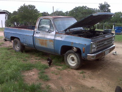tx_fireman_lukes 1980 Chevrolet C/K Pick-Up