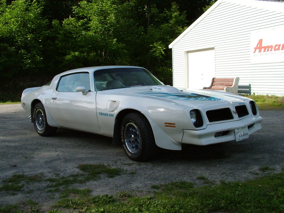 Another Car6on14 1976 Pontiac Trans Am post... - 13123666