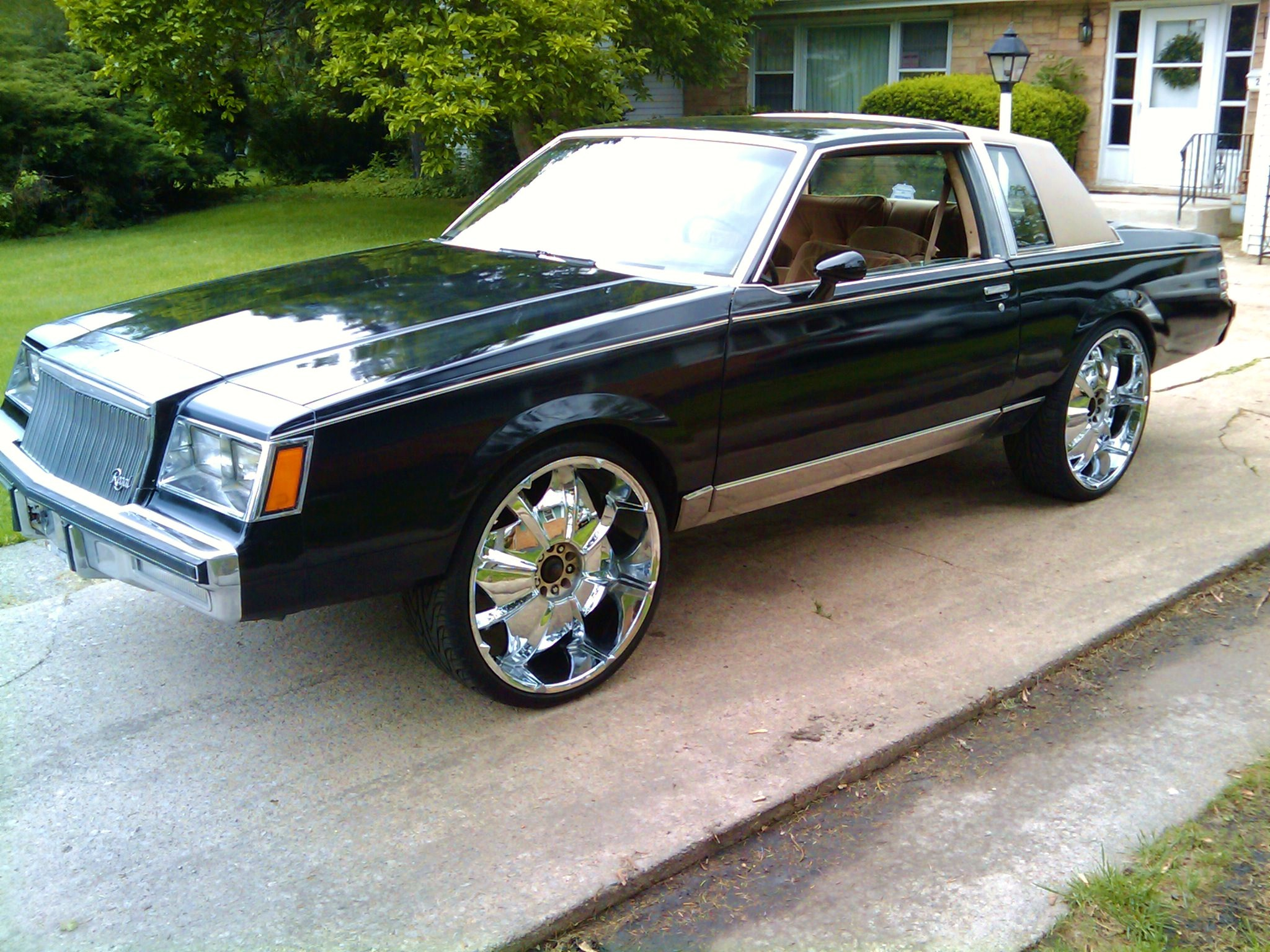 chinwoo 1981 buick regal specs photos modification info at cardomain. Black Bedroom Furniture Sets. Home Design Ideas