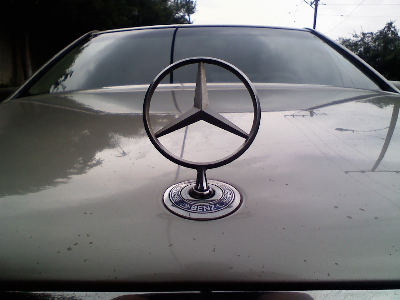 Another benzorider323 1996 Mercedes-Benz S-Class post... - 13193163