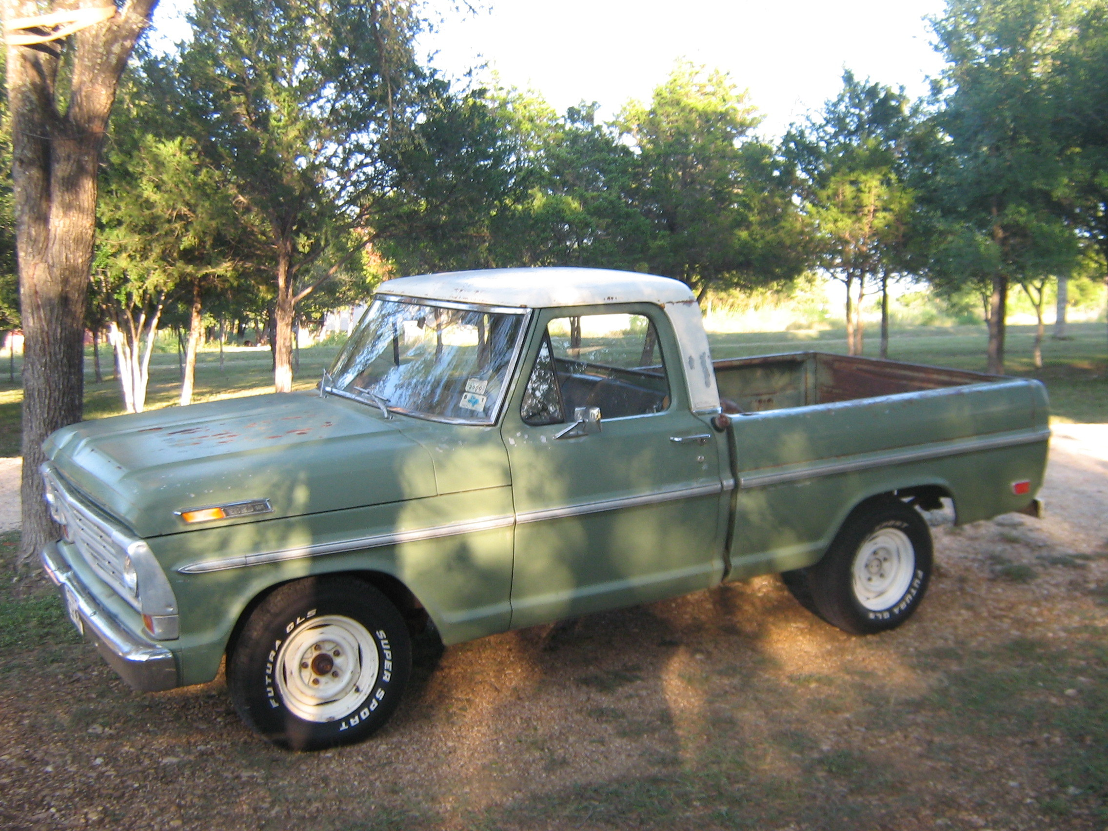 ReneO 1969 Ford F150 Regular Cab 13180778