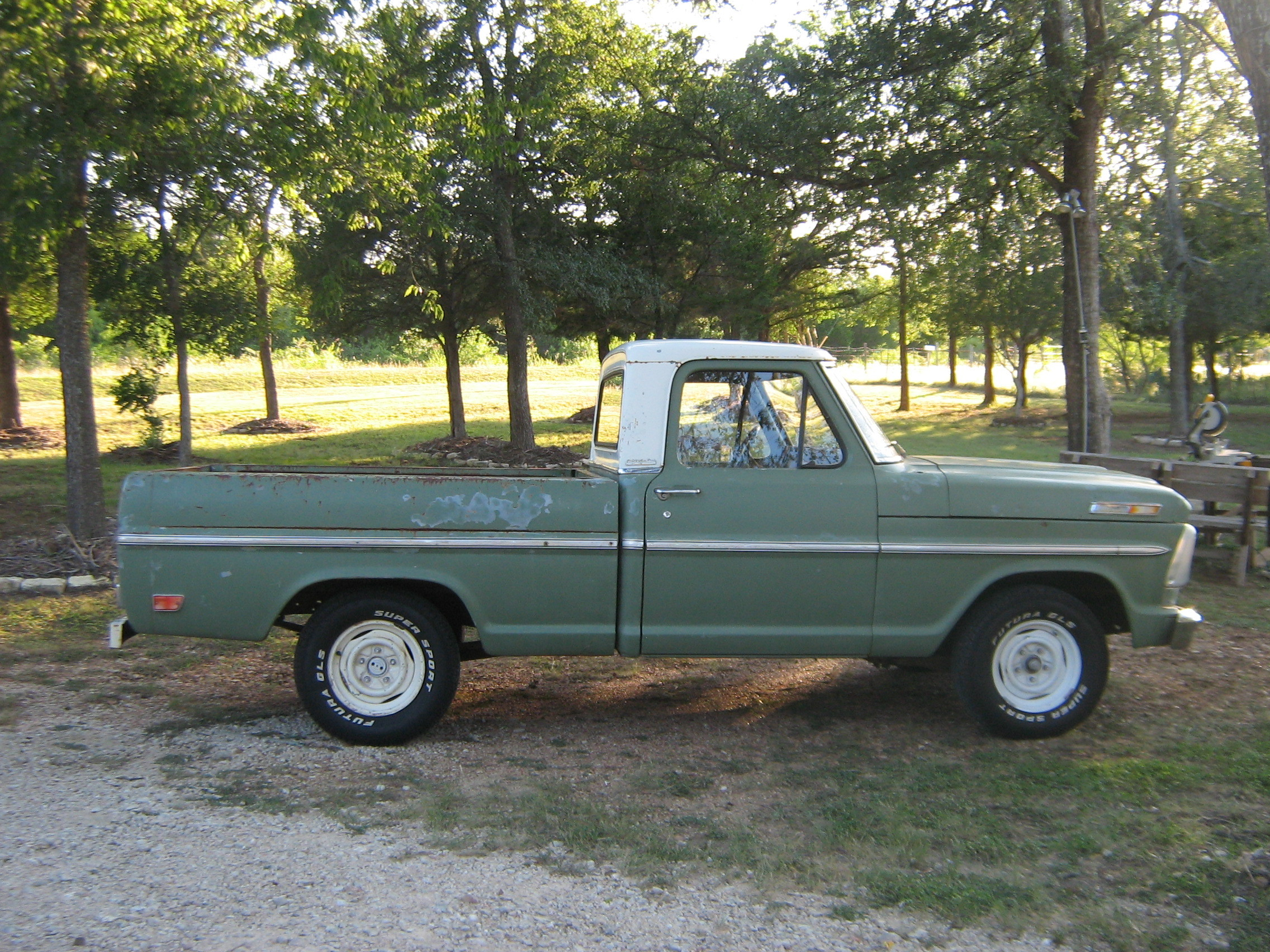 ReneO 1969 Ford F150 Regular Cab 13180780