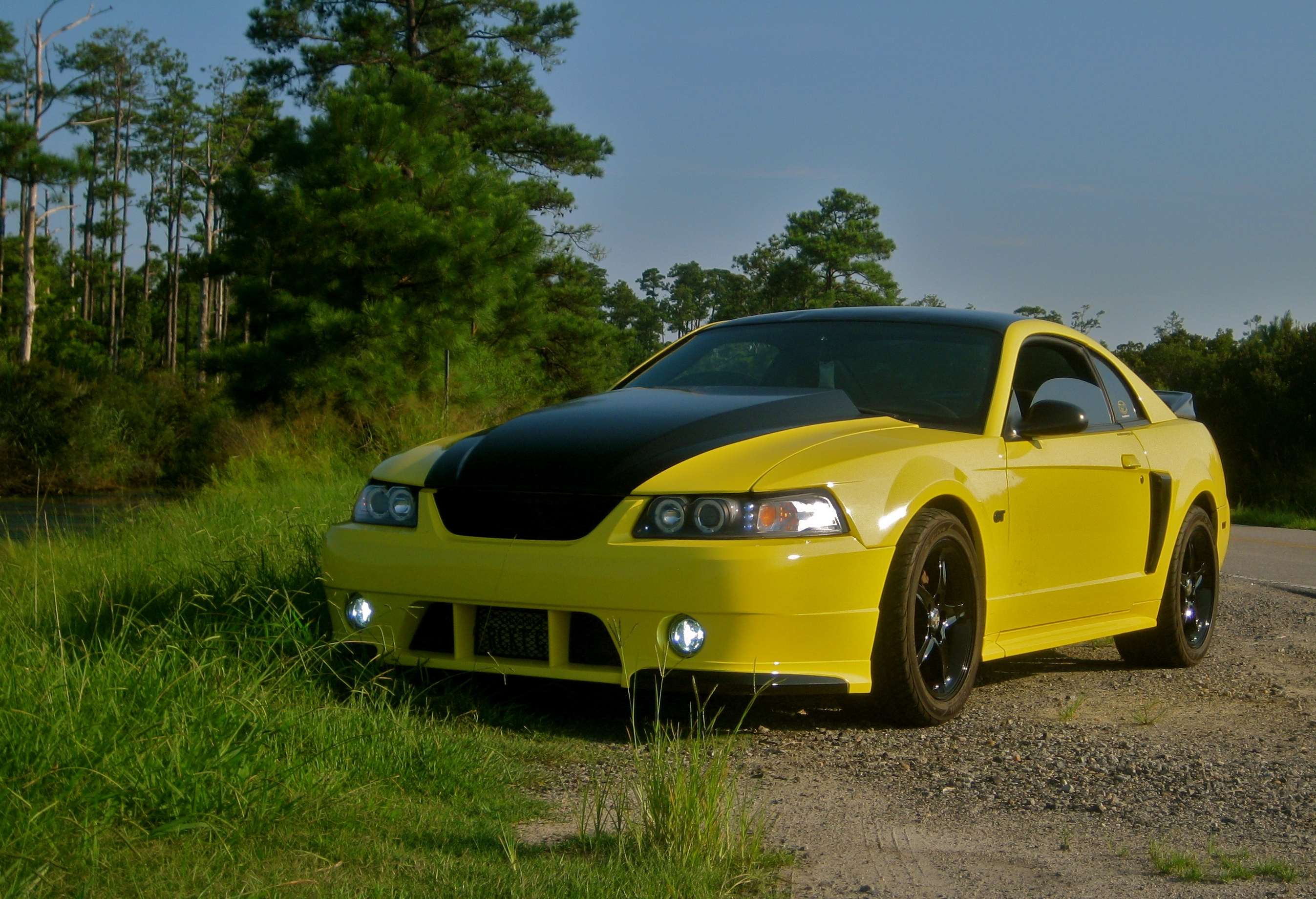 03GTBananaRocket 2003 Ford Mustang 13188170