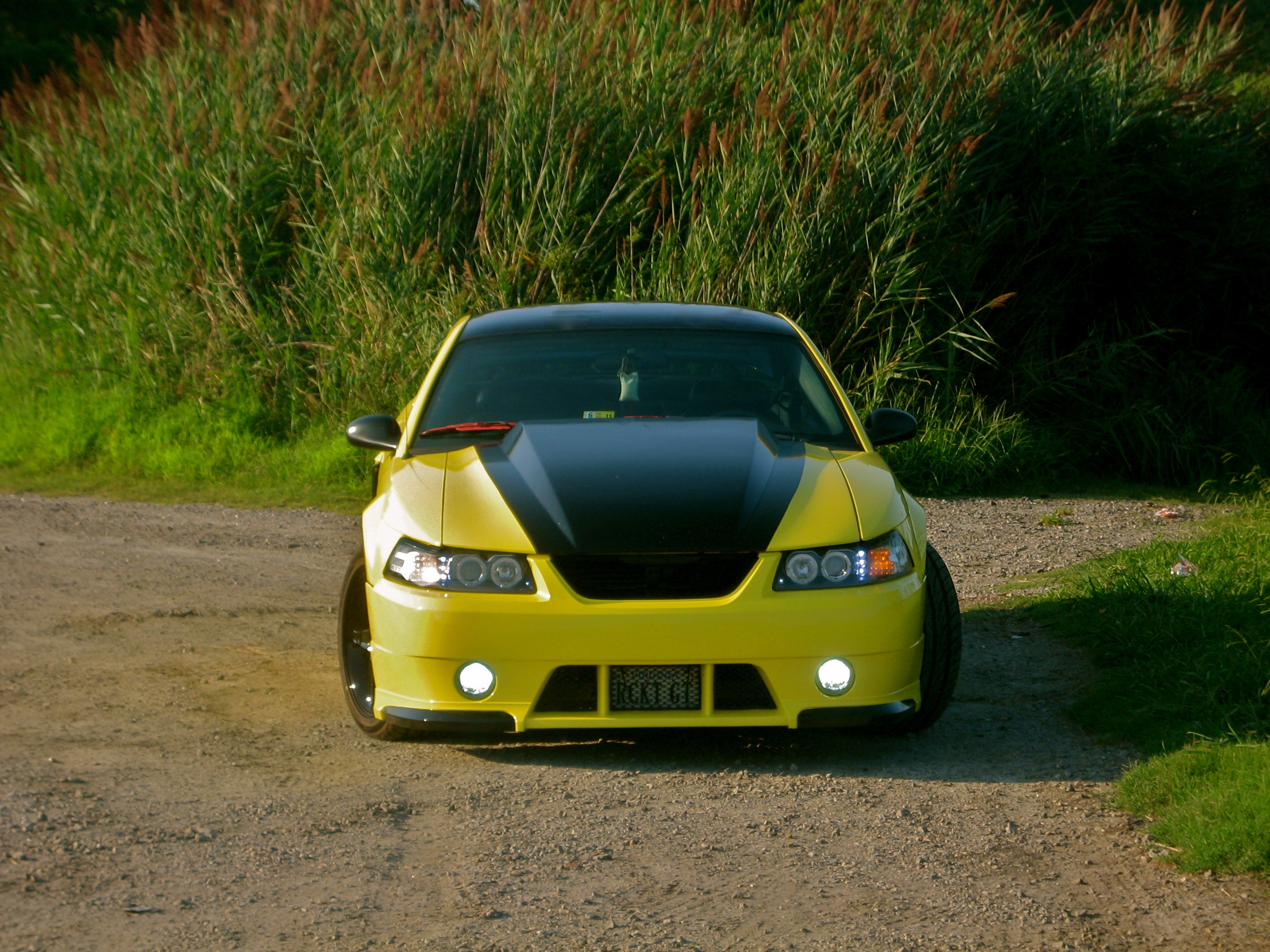 03GTBananaRocket 2003 Ford Mustang 13188176