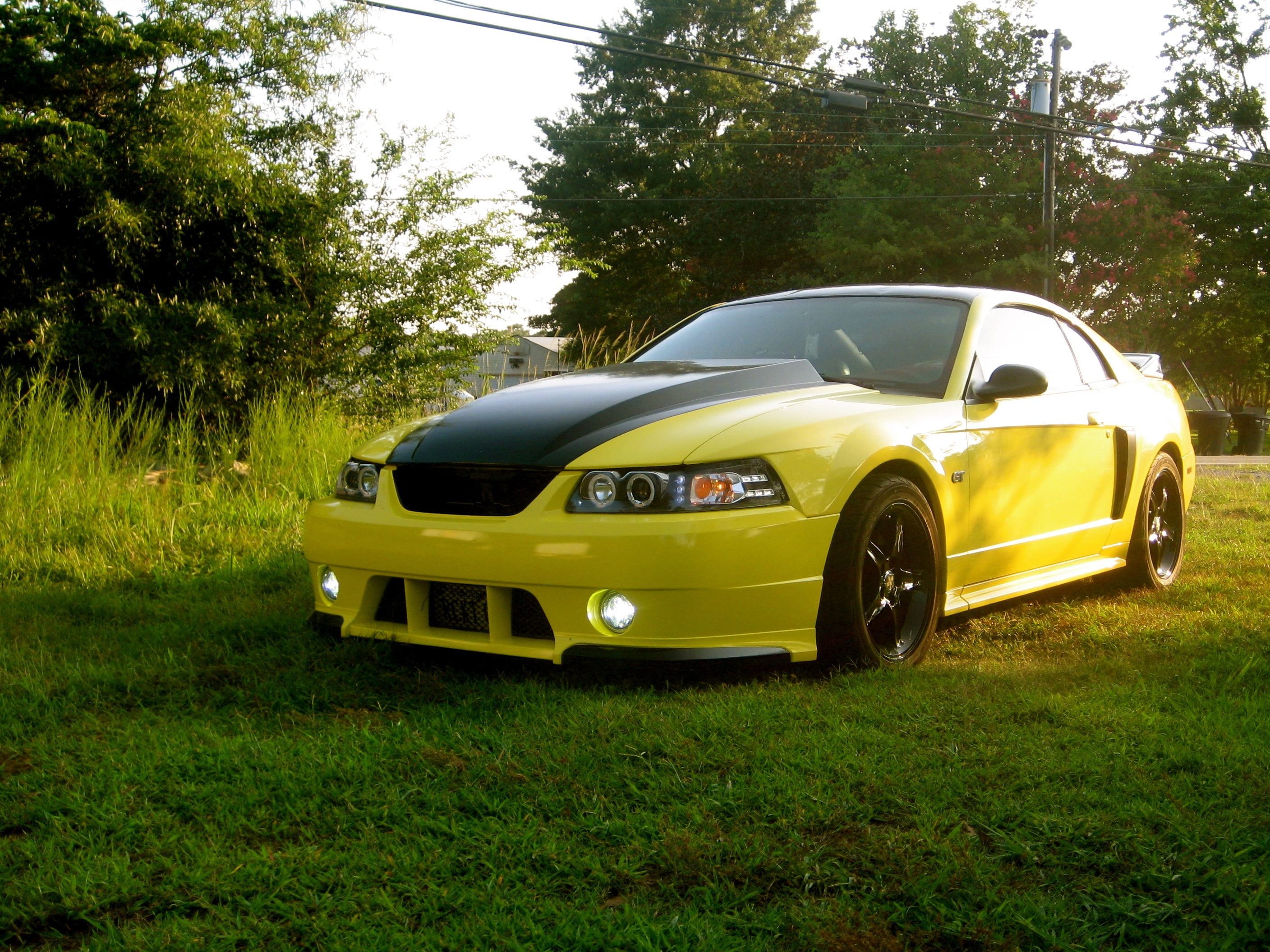 03GTBananaRocket 2003 Ford Mustang 13188181