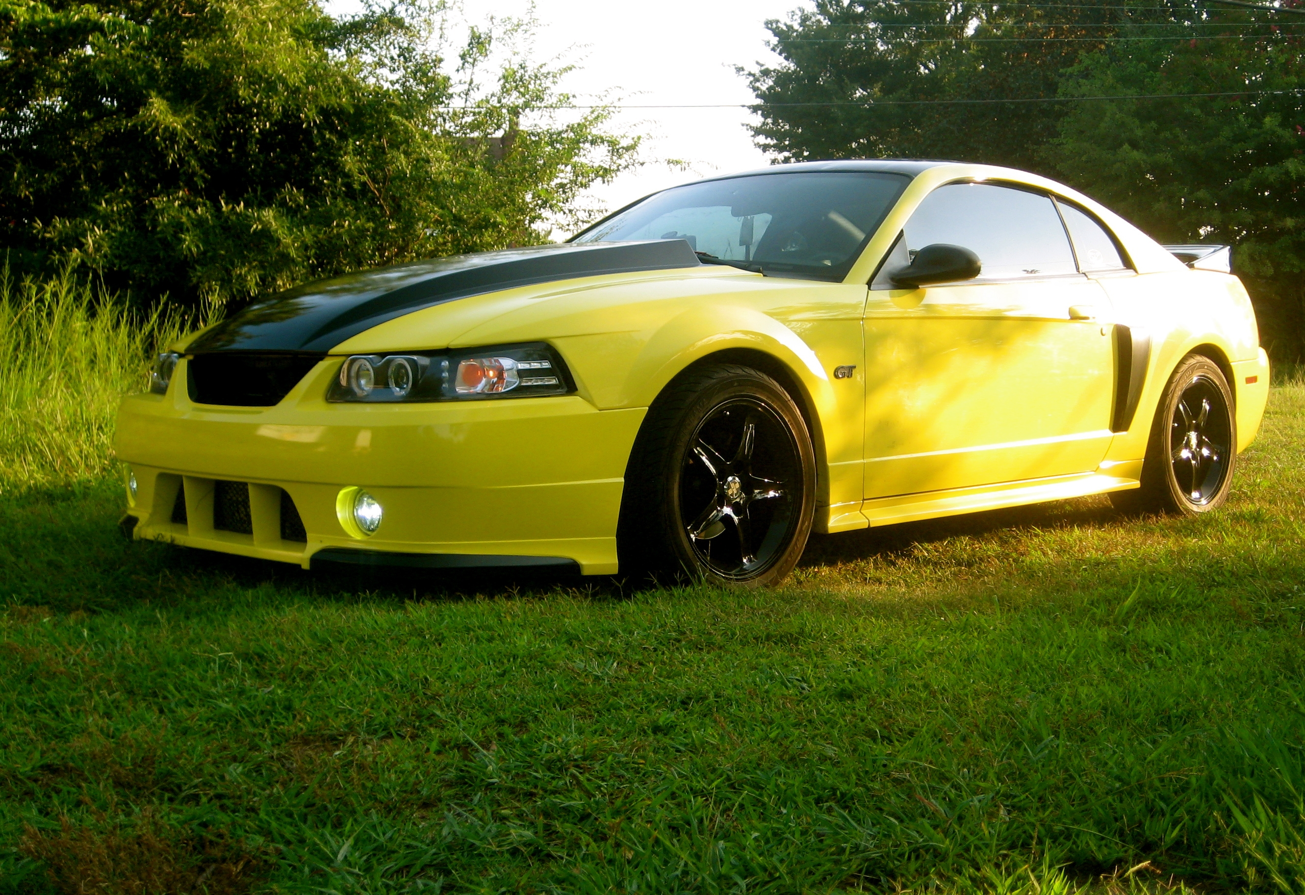 03GTBananaRocket 2003 Ford Mustang 13188182