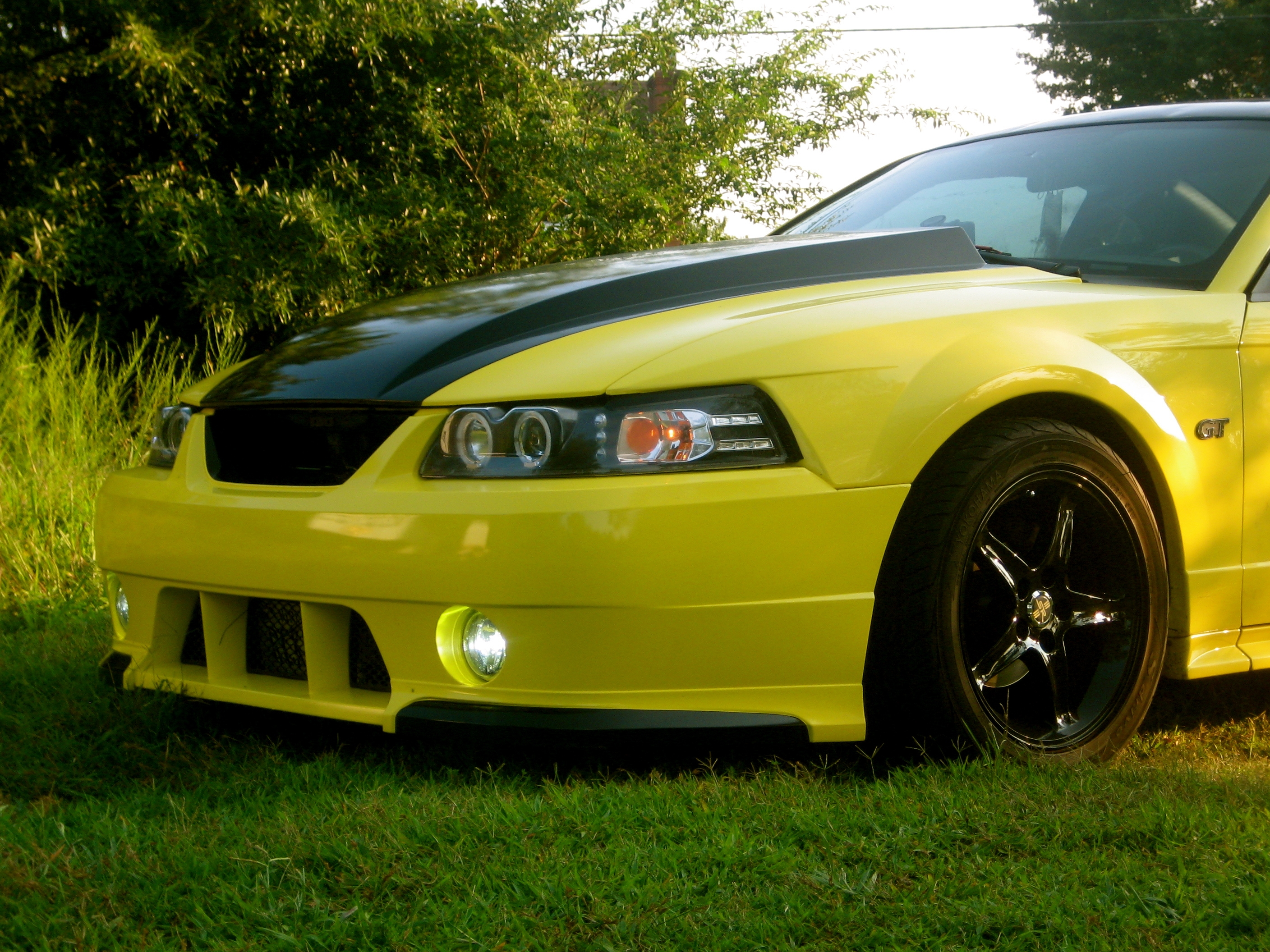 03GTBananaRocket 2003 Ford Mustang 13188183