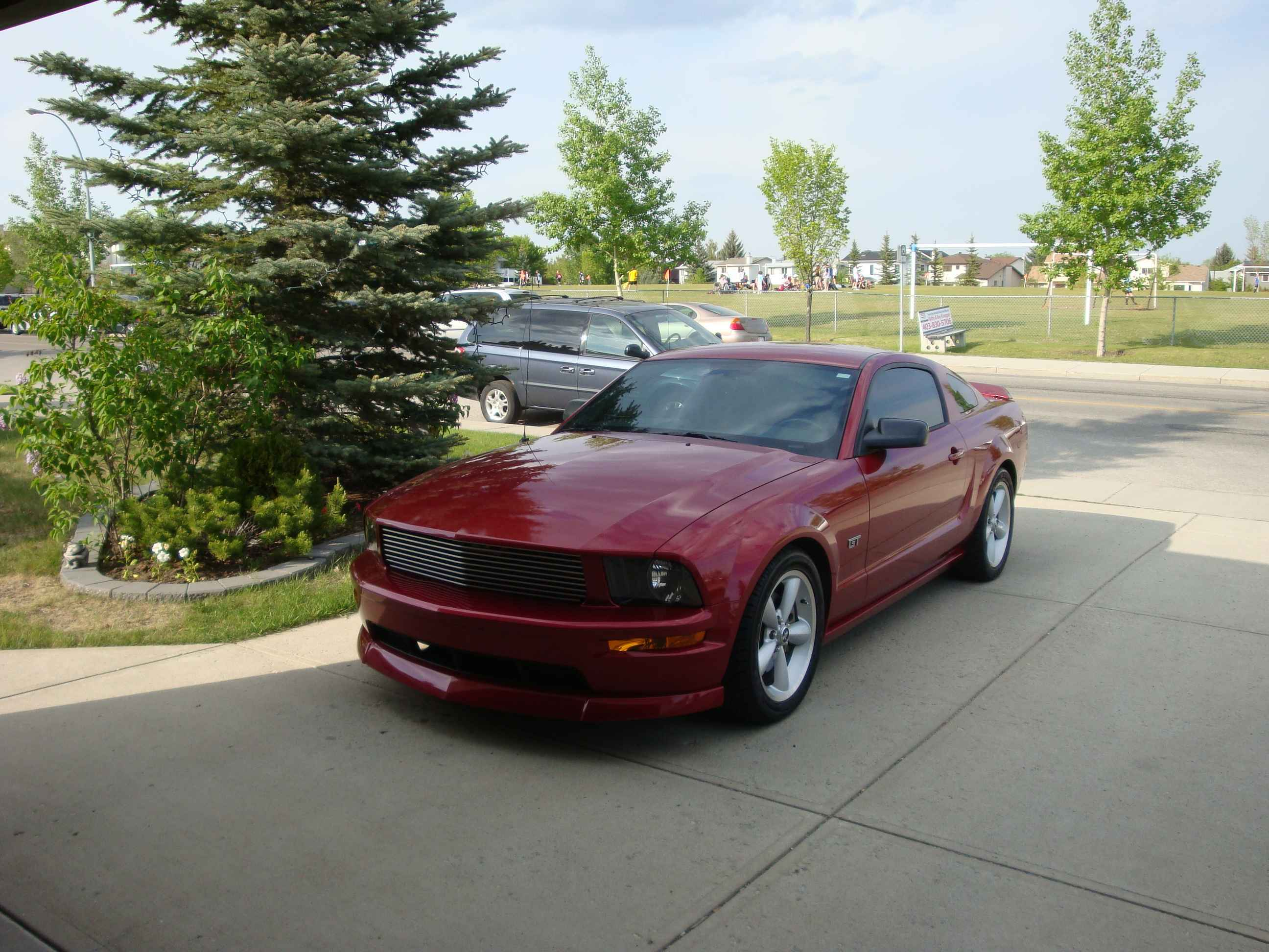 Another Uncola 2005 Ford Mustang post... - 13477860