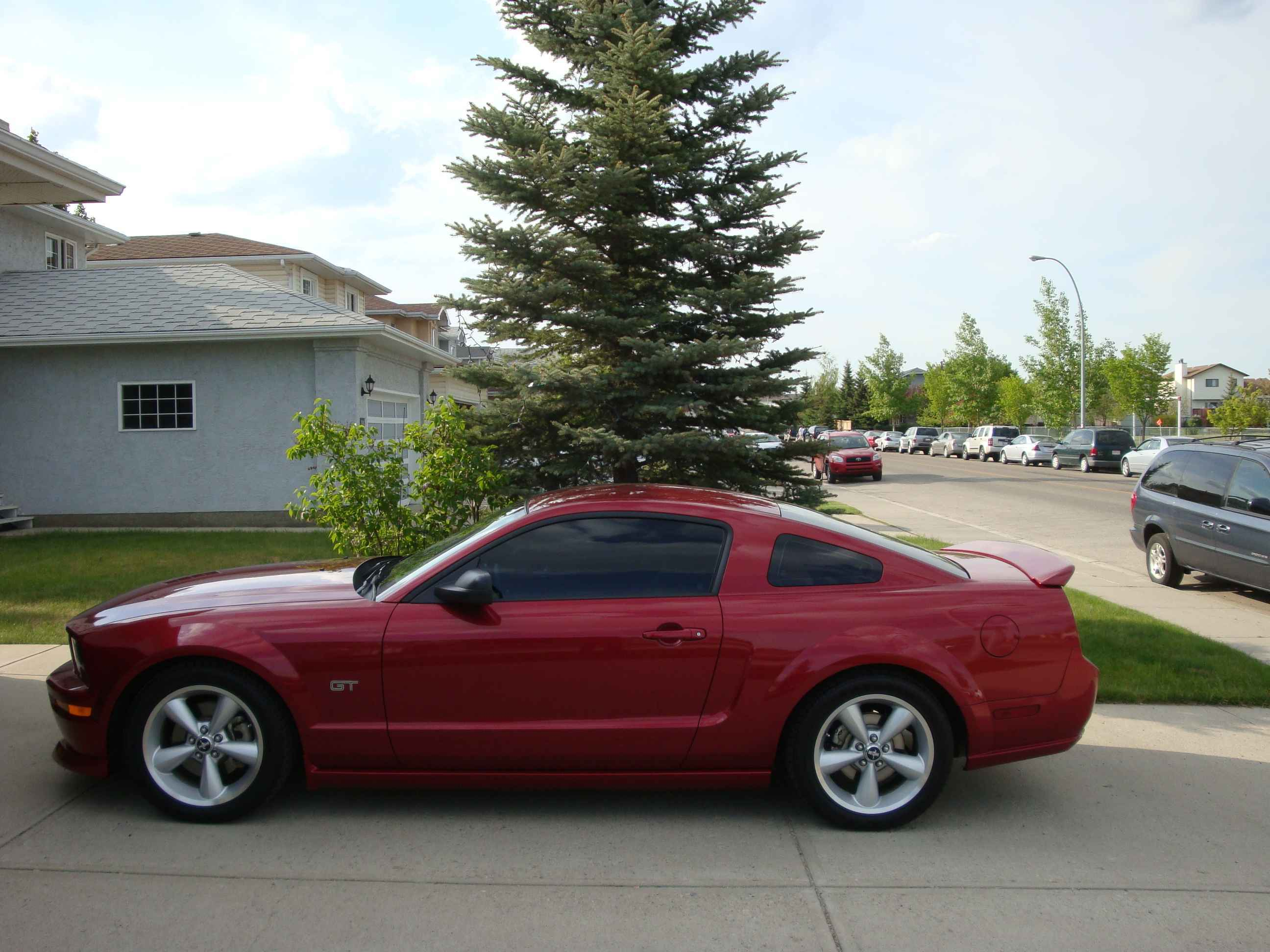 Another Uncola 2005 Ford Mustang post... - 13477861