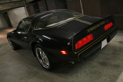 radbacks 1979 Pontiac Trans Am