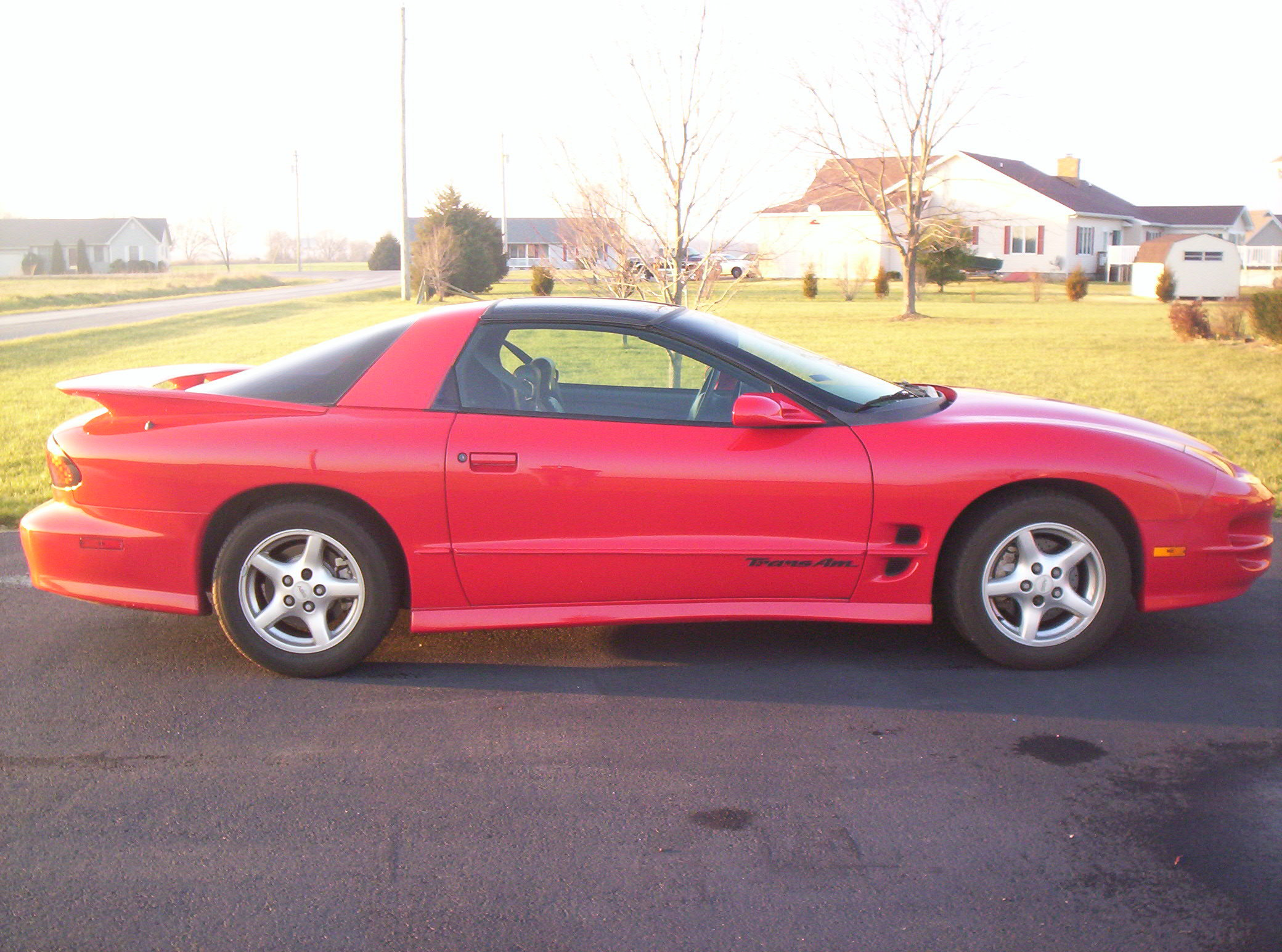 1998_Trans_Am_ls 1998 Pontiac Trans Am 13242497