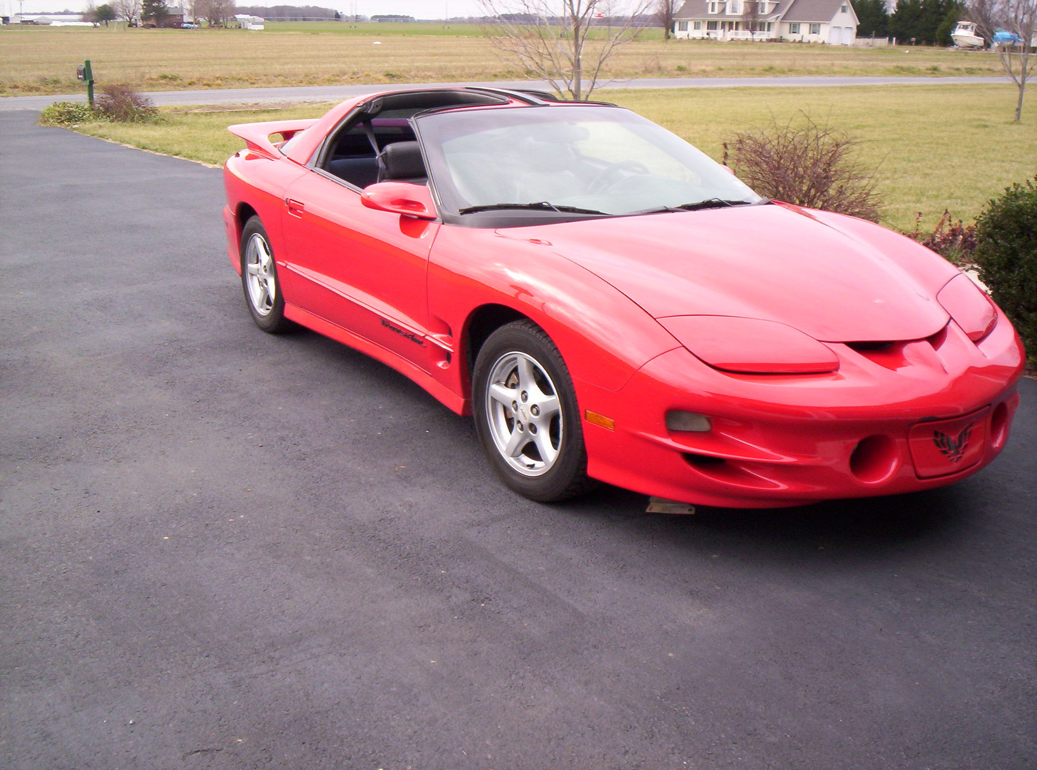1998_Trans_Am_ls 1998 Pontiac Trans Am 13242498