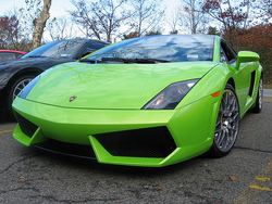 warrior101s 2008 Lamborghini Gallardo