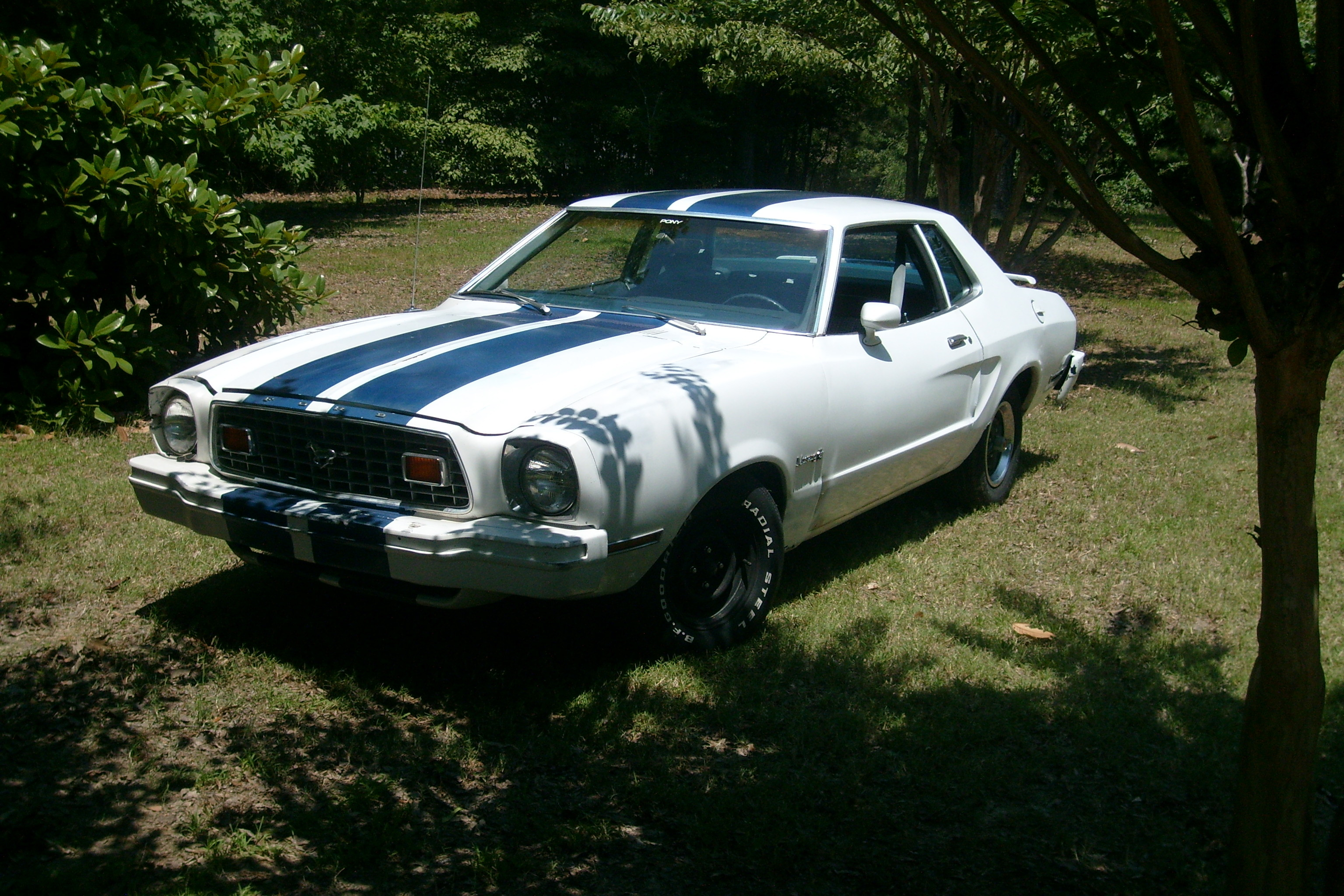 Another NX_Hoss 1976 Ford Mustang II post... - 13247317