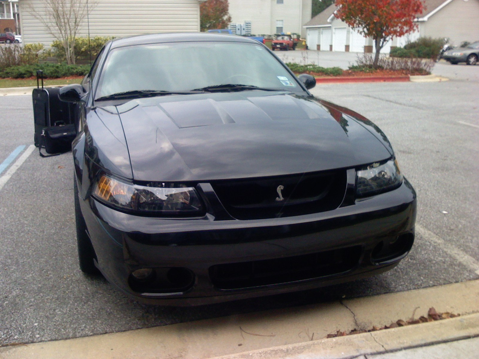 Another TT_COBRA 2003 Ford Mustang post... - 13469511