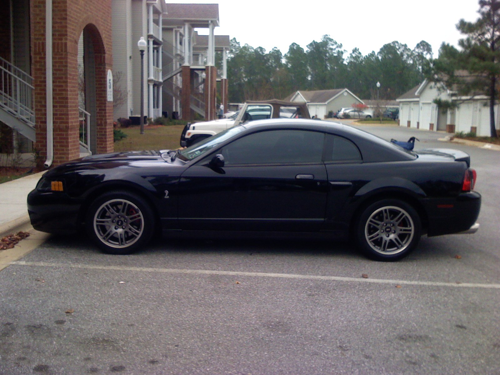 Another TT_COBRA 2003 Ford Mustang post... - 13469514