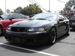rsnyder4755s 2003 Ford Mustang