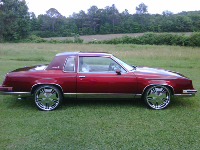 candycutty7682 1985 Oldsmobile Cutlass Supreme 13274847
