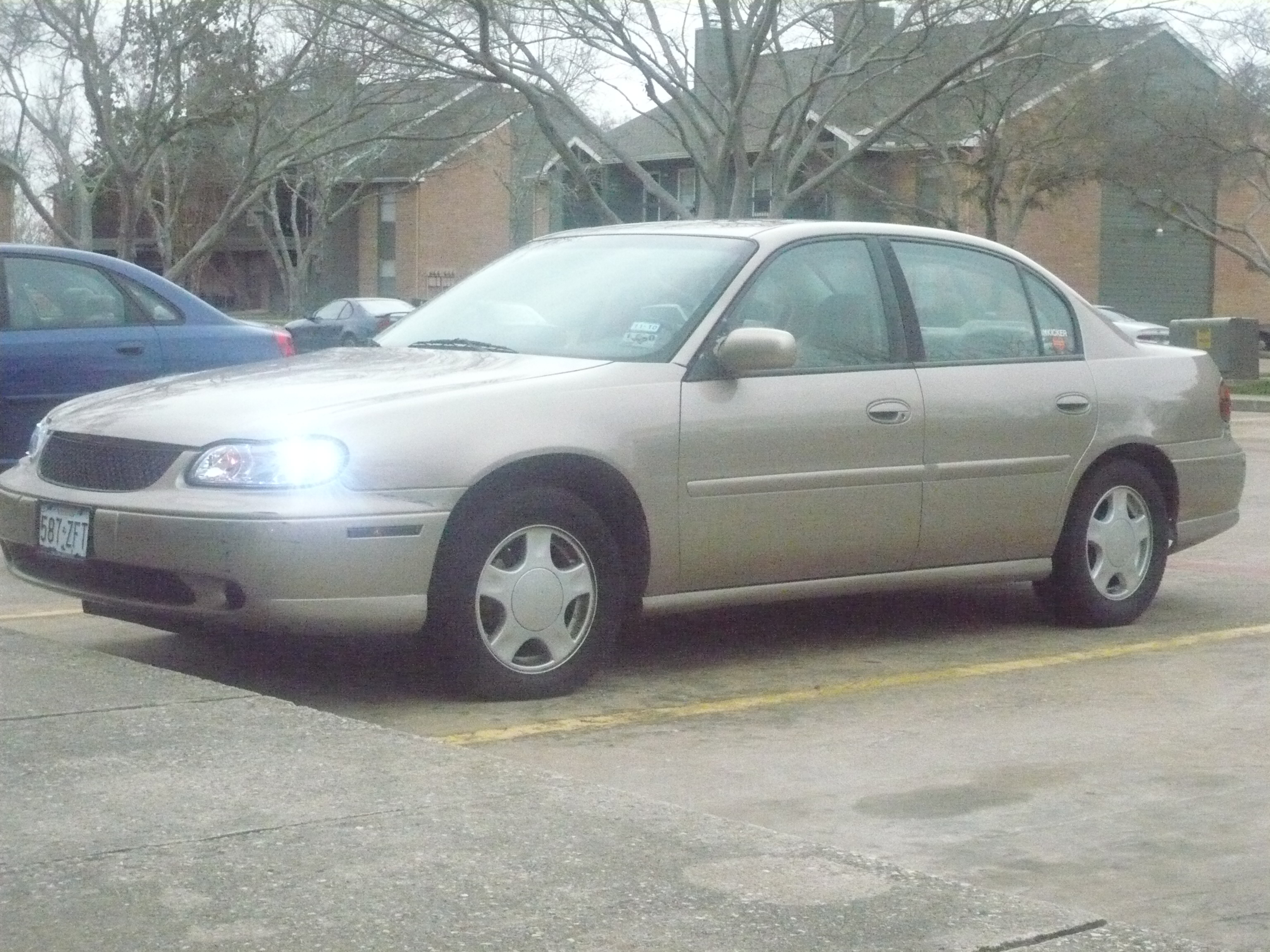 Another Moya_Boo 2000 Chevrolet Malibu post... - 13274497