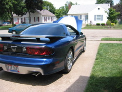 95BluStreaks 1995 Pontiac Trans Am