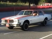 Another OLDSMO_DELTA_88 1981 Oldsmobile Delta 88 post... - 13310126