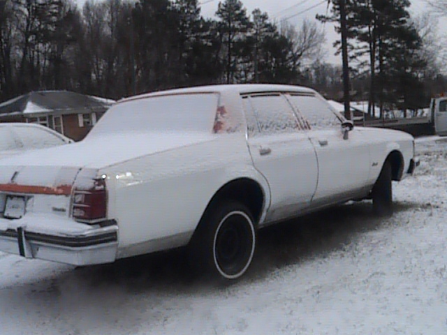 Another OLDSMO_DELTA_88 1981 Oldsmobile Delta 88 post... - 13310136