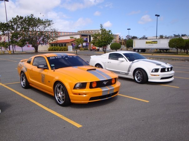 hector4 2007 Ford Mustang