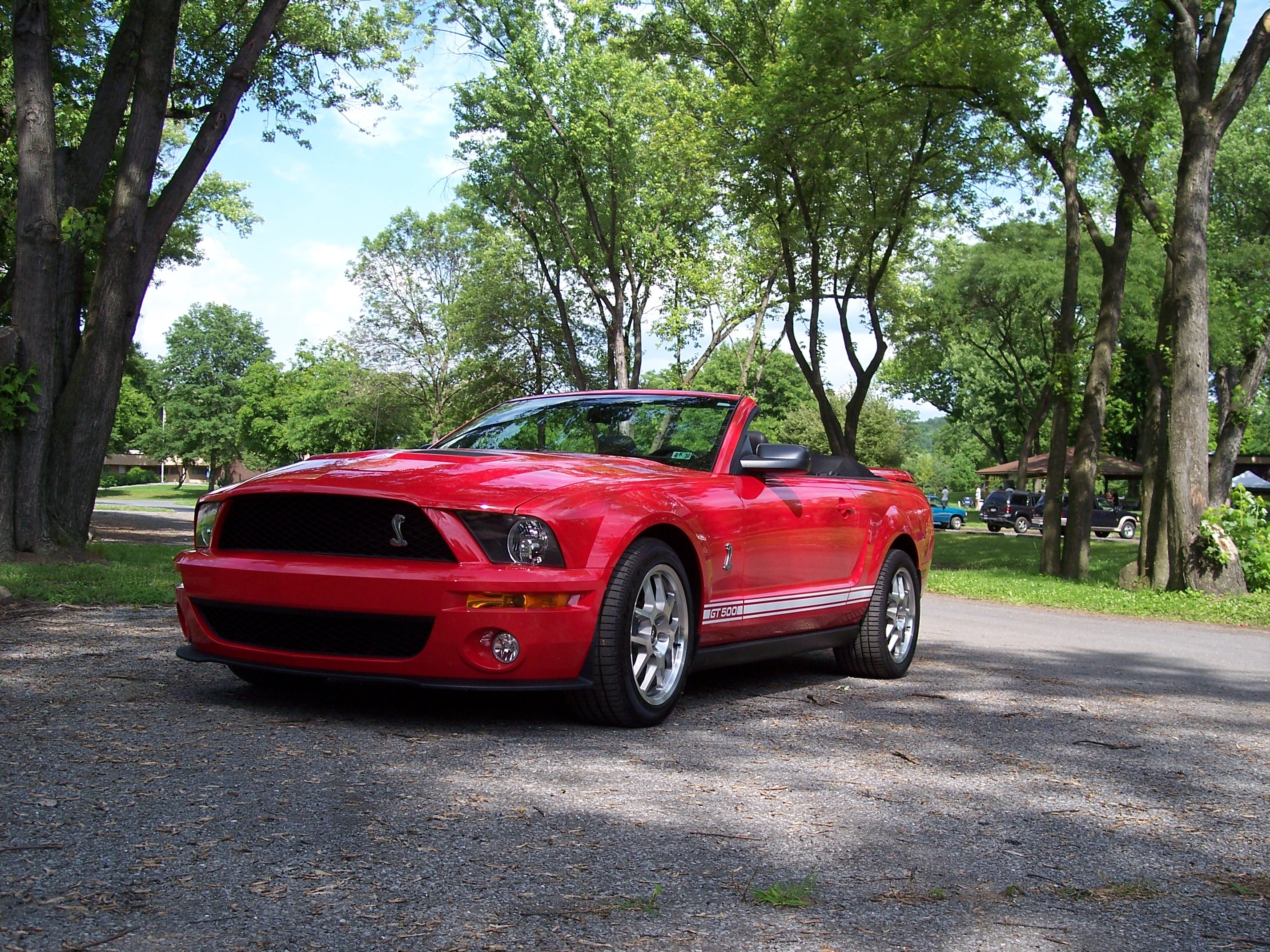 jas03ms 2008 Ford Mustang Specs, Photos, Modification Info ...