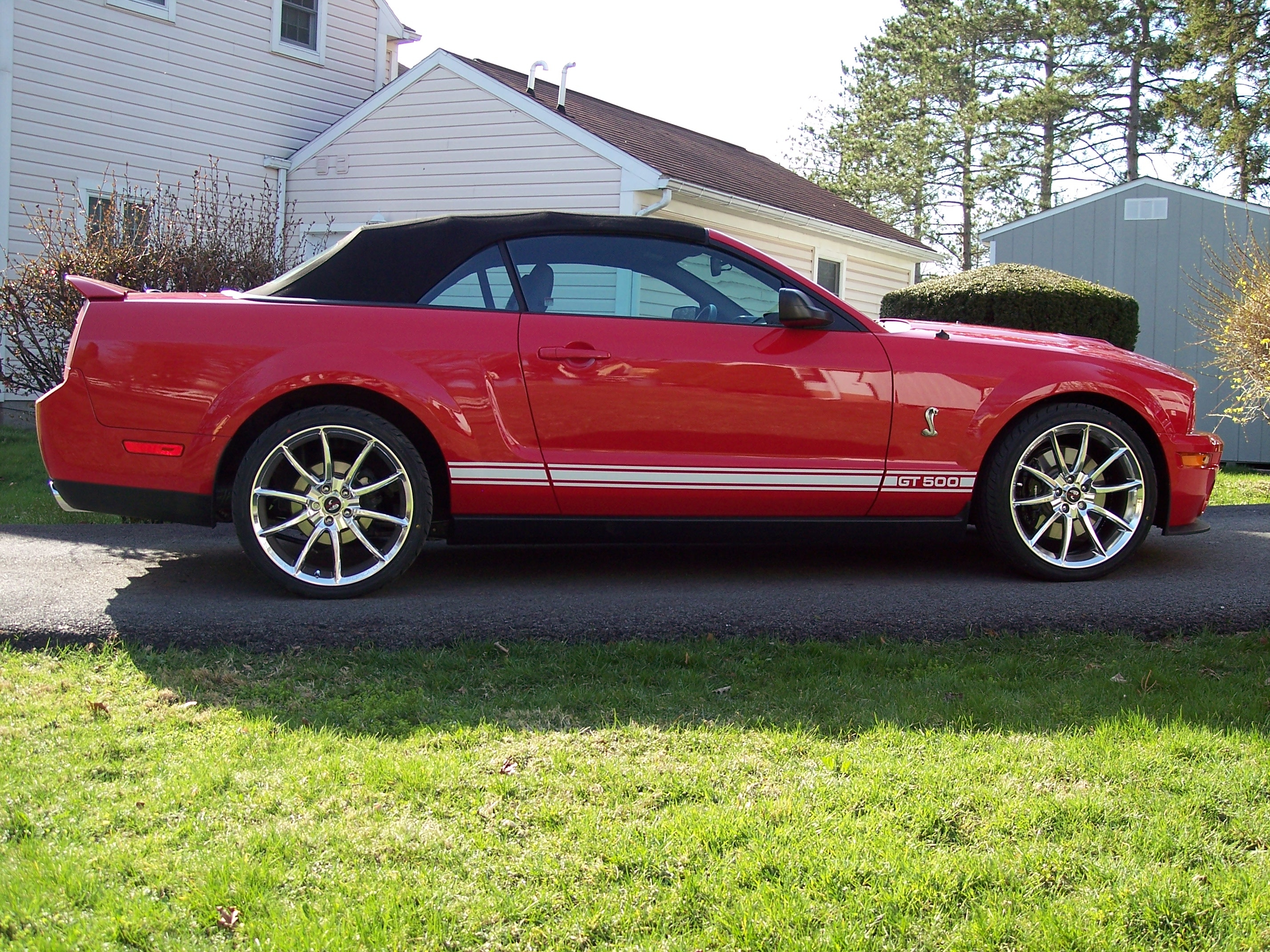 Another jas03ms 2008 Ford Mustang post... - 13321549