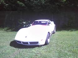 wildchild46 1973 Chevrolet Corvette