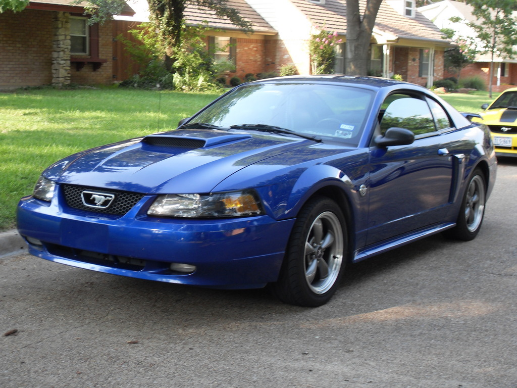 Bluestanggt187 2004 Ford Mustang Specs Photos Modification Info At Cardomain