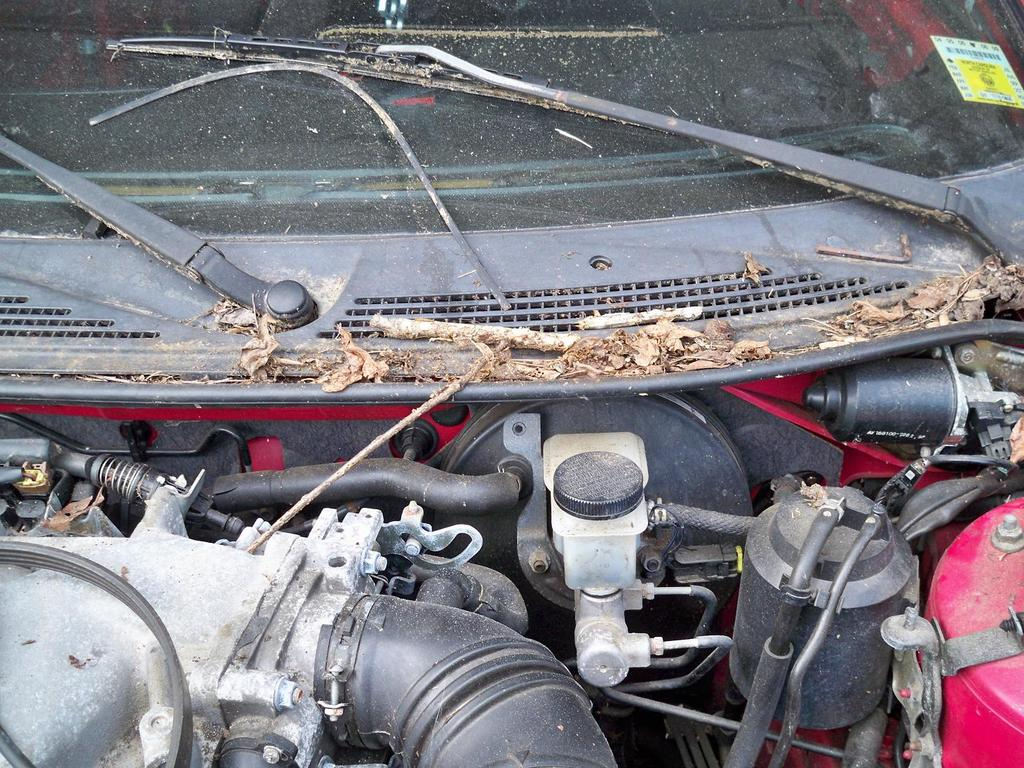 Another bonedaddy95gt 1994 Ford Probe post... - 13333123