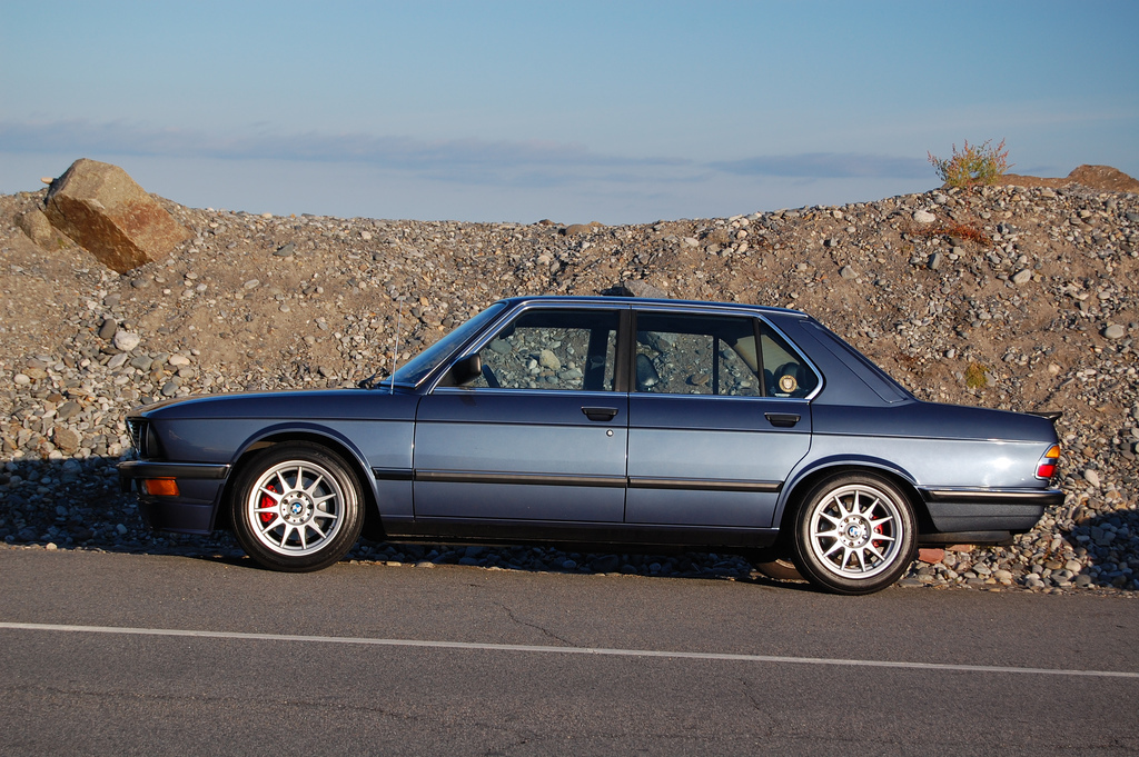 ALPINAMAN 1983 BMW 5 Series 18850730