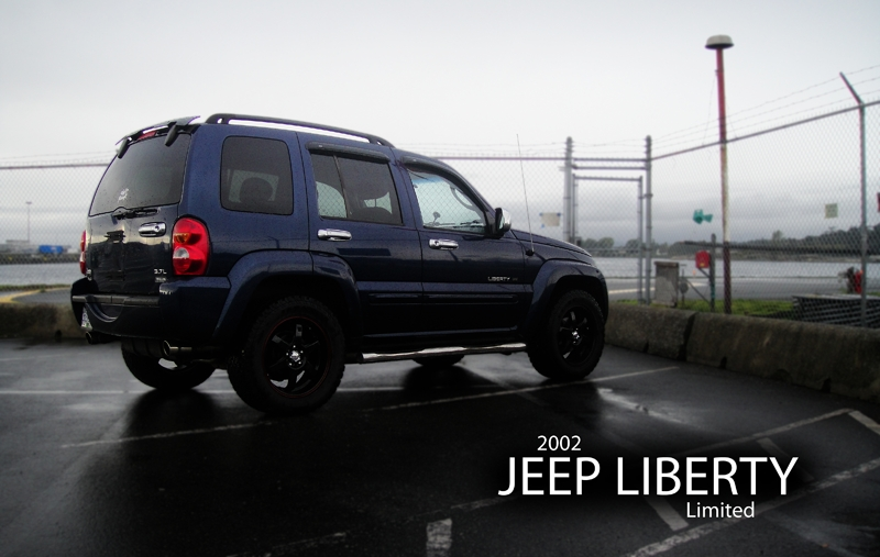 Amster_G 2002 Jeep Liberty 13344171