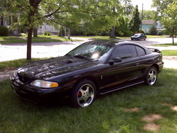 lnc96Cobras 1996 Ford Mustang