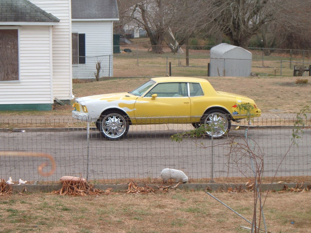 Taylorboyzforeva S 1979 Chevrolet Monte Carlo In Henderson Nc