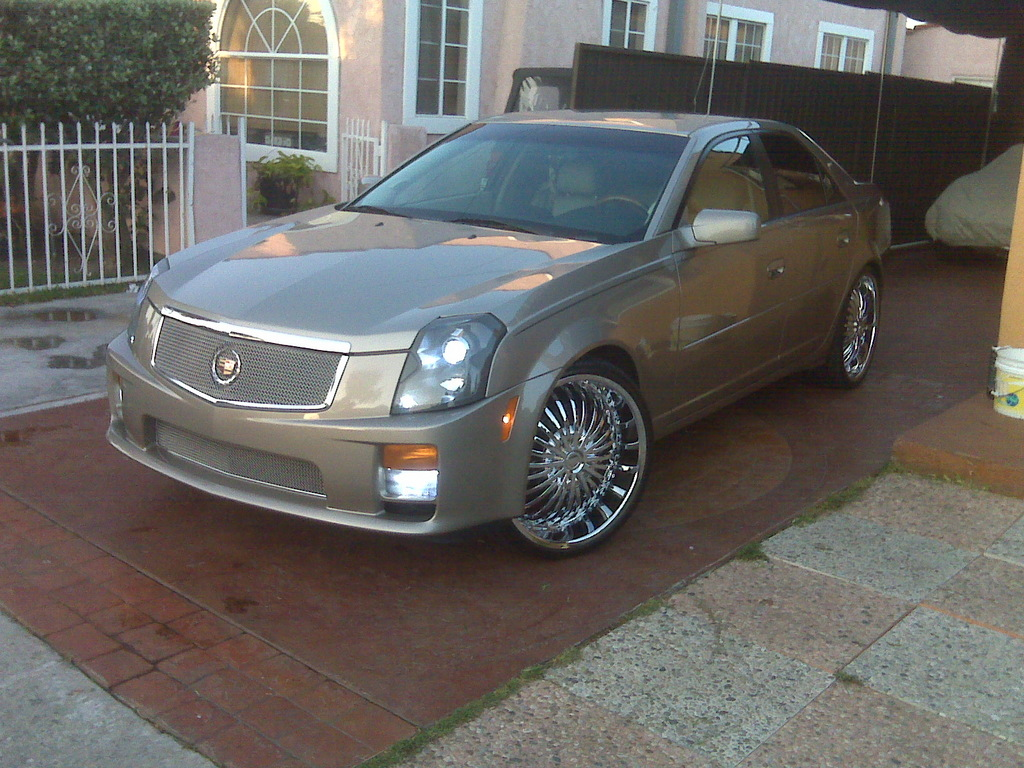 daverscaddy 2003 cadillac cts specs photos modification. Black Bedroom Furniture Sets. Home Design Ideas